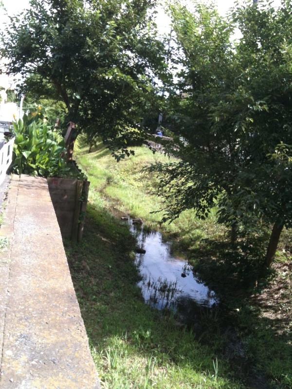 笹塚界隈を流れる玉川上水
